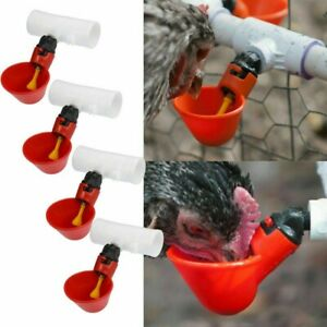 4pcs Water Feeders Chicken Automatic Fountains Built in Plunger Accessory