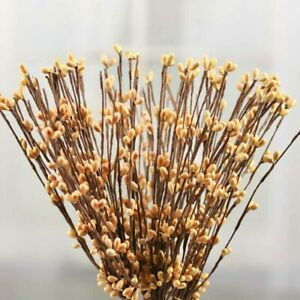 10 Old Gold Pip Berry Stems Wedding Crafts Folk Art Doll Making Wreaths Swags