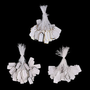 100x Labels Tie String Strung Price Tickets Jewelry Watch Clothing Display Ta Fh