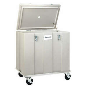 Thermosafe 303 Insulated Shipping Container