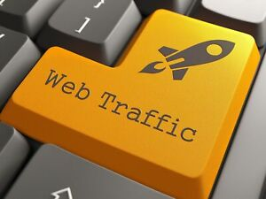 Unlimited Website Visitors For 60 Days Only 20