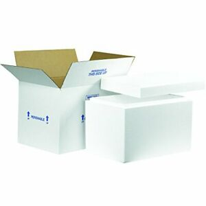 Boxes Fast Bf261c Insulated Shipping Box With Foam Container 19 X 12 X 12 1