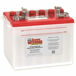 Basement Watchdog Emergency Sump Pump Battery