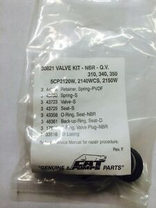 Pressure Washer Cat 310 340 350 Pumps Valves Kit Set 30821