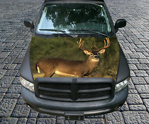 H87 Deer Hunting Hood Wrap Wraps Decal Sticker Tint Vinyl Image Graphic