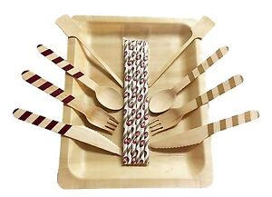Disposable Wooden Cutlery And Plates 24 Ea Tailgate Kit San Francisco 49ers