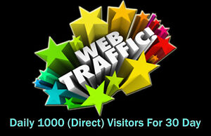 Daily 1000 Worldwide Direct Website Traffic For 30 Days Package