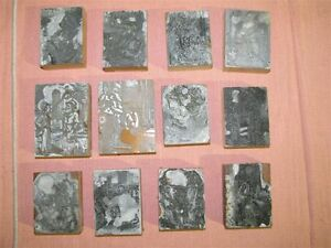 Lot Of 12 1940 s 50 s Letterpress Agricultural Themed Line Art Printing Plates