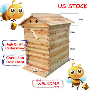 Wooden Bee Hive Brood Beekeeping House Box For Auto Honey Beehive Frame Us Ship