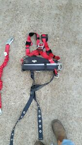 Protecta Safety Harness With Lanyards
