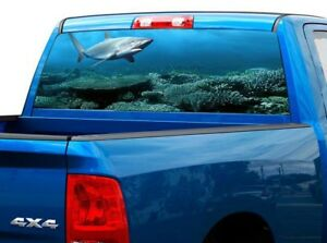 P508 Shark Rear Window Tint Graphic Decal Wrap Back Pickup Graphics
