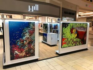 Mall Retail Kiosk Fine Art Display 10 X 15 30k New Flooring Included