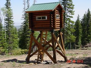 Tiny Log Cabin 8 X 6 Shell Kit Logs And Fasteners Only Free Shipping