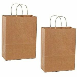 Paper Retail Shopping Bags Kraft With Rope Handles Pack Of 100