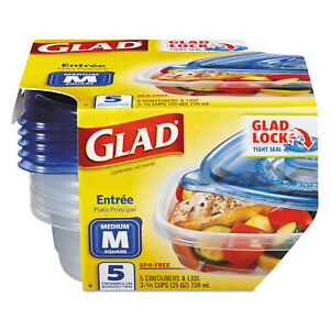 Entree Food Storage Containers 25 Oz 5 pack 6 Pks ctn