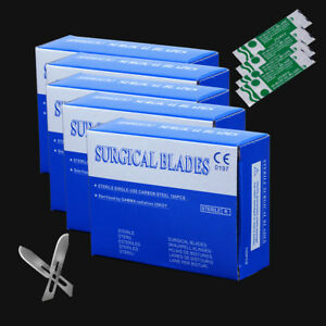 5box Dental Surgical Scalpel Blades Instruments Scalpels 10 Steel 4 3 0 8cm Us