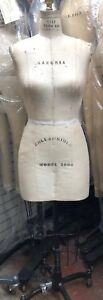 Wolf Form Sz 12 Model 2006 Professional Dress Form