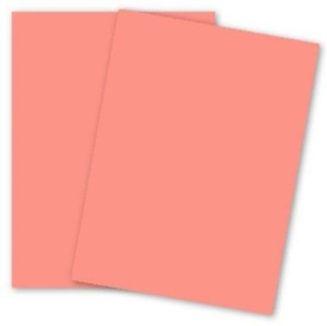 Domtar Colors Earthchoice Salmon 8 5 X 11 Card Stock Paper 90lb Index Pk