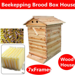 7pcs Upgraded Bee Hive Honey Beehive Frames 1pc Wooden Box Beekeeping House