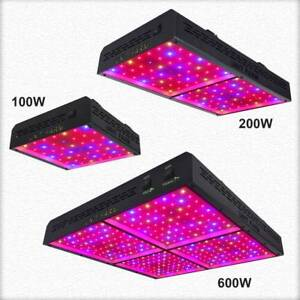 300w 600w 1000w Unit Farm Led Grow Light Full Spectrum Veg Bloom Indoor Plants