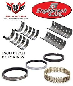 Enginetech Ford 351 351w Windsor 5 8l Rod Main Bearings With Moly Piston Rings