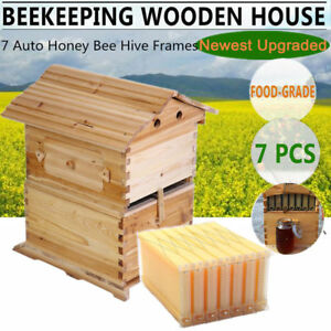 7 Auto Bee Hive Flow Honey Frame Beekeeping Wooden House Box Brood Upgraded