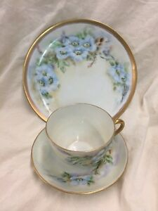 Vintage Hand Painted Cup And Saucer Plate Signed Johnson Forget Me Not
