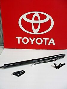 Highlander Power Lift Gate Strut Assmbly One Pair Oem Toyota Fast Ship