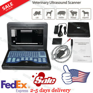 Vet Portable Laptop Machine Digital Ultrasound Scanner 6 5mhz Rectal Probe