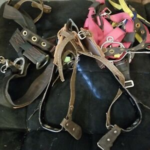 Tree pole Climbing Kit equipment Harness Buckingham Spurs Gaffs Belts No Ropes