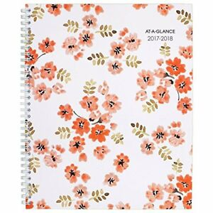 At a glance Academic Weekly monthly Planner July 2017 June 2018 large