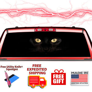 Black Cat Eyes Dark Rear Window Graphic Decal Sticker Vinyl Van 07