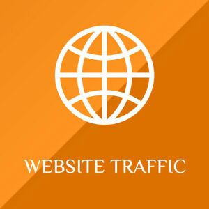 W bsite Traffic Service Buy 100 Real Targeted W bsite Visitors