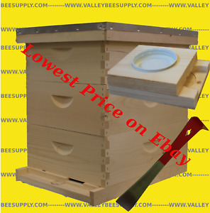 10 Fr Triple Medium Un assembled Hive W Free Feeder Hive Tool Queen Exluder