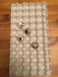 100 Molded Paper Quail Egg Trays Cartons 7 x13 Holds 50 Eggs
