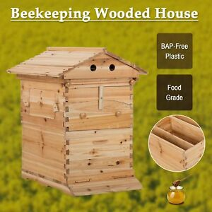 Bee Hive Frame For Beekeeping Beehive Wooden Beekeeping House Box