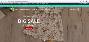 Established Baby Shop Turnkey Website Business For Sale dropshipping Profitable