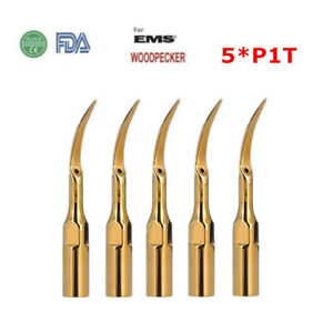 5pcs Dental Ultrasonic Piezo Scaler Tips P1t For Ems woodpecker Scaler Handpiece