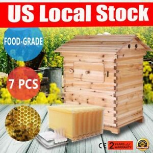 7pcs Honey Hive Beehive Frames wooden Beekeeping Cedarwood House Box
