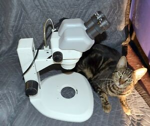 Nikon Smz645 Stereo Microscope W c ps Stand 10x Eyepieces W diopter