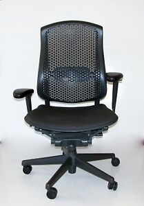 Herman Miller Celle Jerome Caruso Fully Loaded Ergonomic Office Task Chair