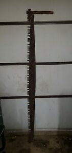 Antique 2 Man Lance Tooth Crescent Ground Crosscut Bucking Saw 72 Logging Saw