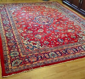 Beautiful Oriental Area Rug Hand Knotted Persian Carpet Wool Cotton 11 8 X 8 6