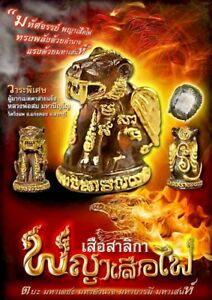 Magic Special Tiger Lp Som Luck Charm Wealth Protection Thai Buddha Amulet