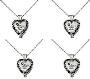 Memory Necklace Pet Dog Cat Locket Brass Urn Paw Pendant Holds Ashes Gift Boxe 4