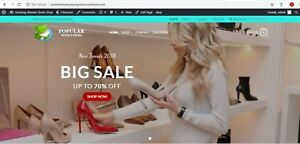 Established profitable shoes turnkey dropship website business for sale