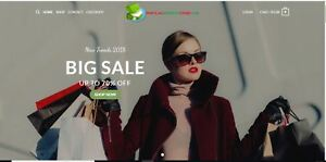 Established Profitable Fashion Turnkey Website Business For Sale dropshipping