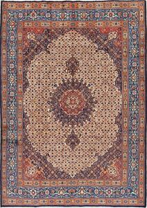 Antique Traditional Medallion Persian Mood Hand Knotted Wool Oriental Rug 7x9
