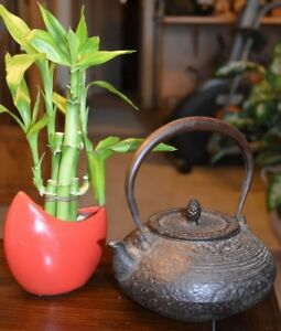 Old Japanese Cast Iron Teapot Made In Japan Pine Cone Finial