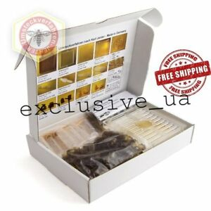 Karl Jenter Beekeeping Set 015 Collect Royal Jelly System Queen Rearing Kit